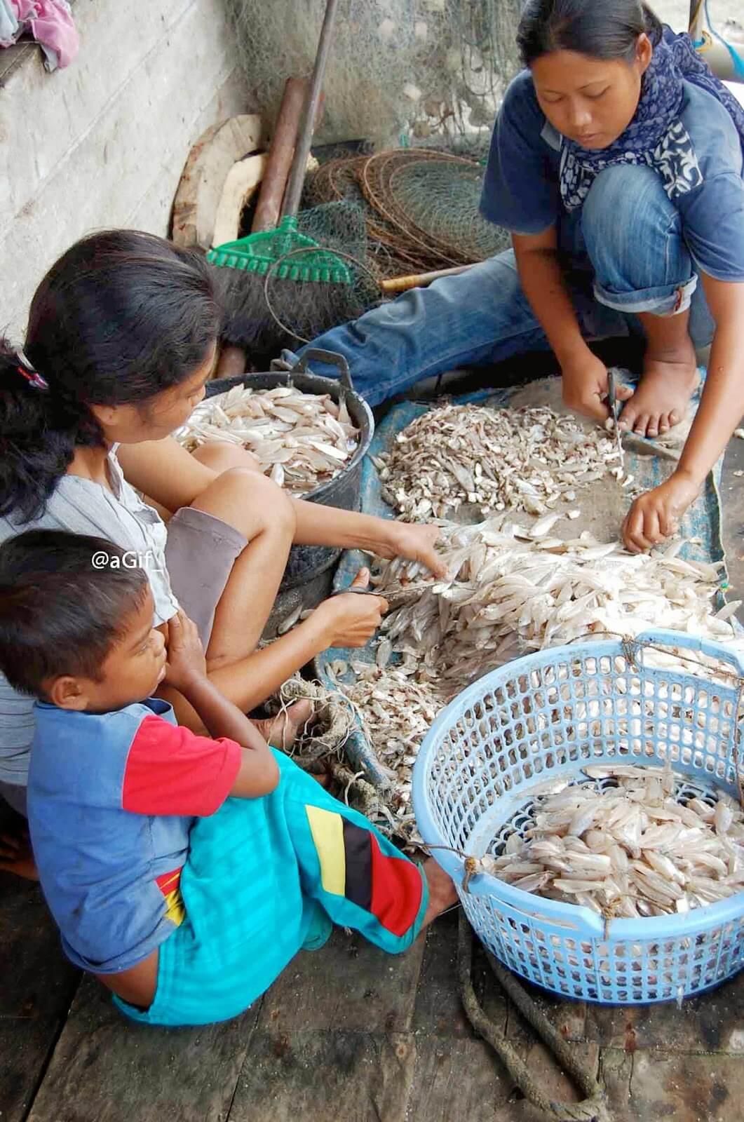 Nelayan Jaring Halus