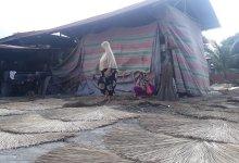 Photo of Ibu Marliyah, Ekspor Lidi Langkat Ke Berbagai Negara