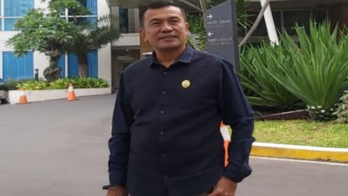 Photo of Sedarita Ginting Apresiasi 5 Capaian Pembangunan Pemkab Langkat Dimasa Kepemimpinan Cana-Ondim
